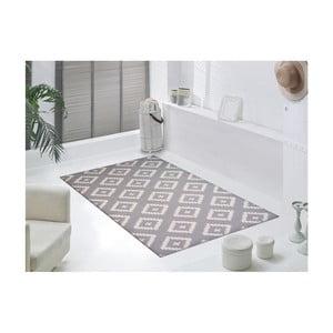 Odolný koberec Vitaus Coach,50x80cm