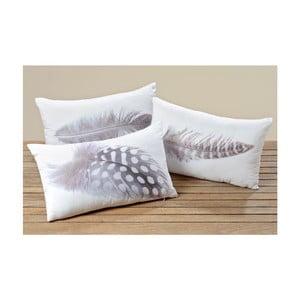 Set 3 perne Boltze Feather, 50 x 30 cm