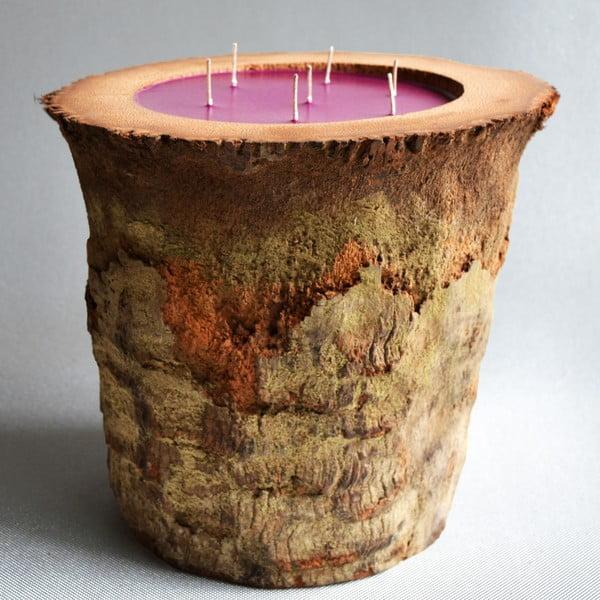 Palmová svíčka Legno s vůní white musk, 280 hodin hoření
