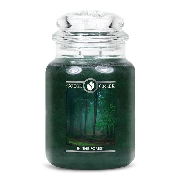 Vonná sviečka v sklenenej dóze Goose Creek V lese, 150 hodín horenia