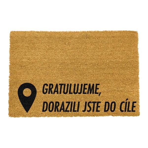 Rohožka z přírodního kokosového vlákna Artsy Doormats Cíl,40x60cm