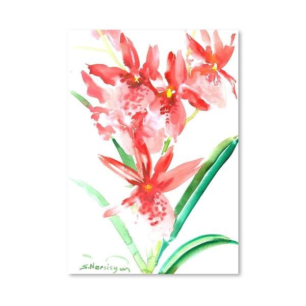 Plakát Orchids in Pink od Suren Nersisyan