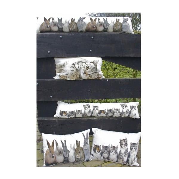 Pernă Rabbits 20x90 cm