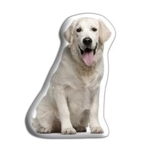 Pernă Adorable Cushions Golden Retriever