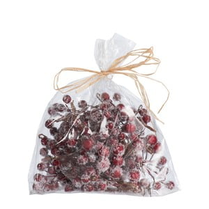 Pytlík dekorativních červených bobulí J-Line Berries
