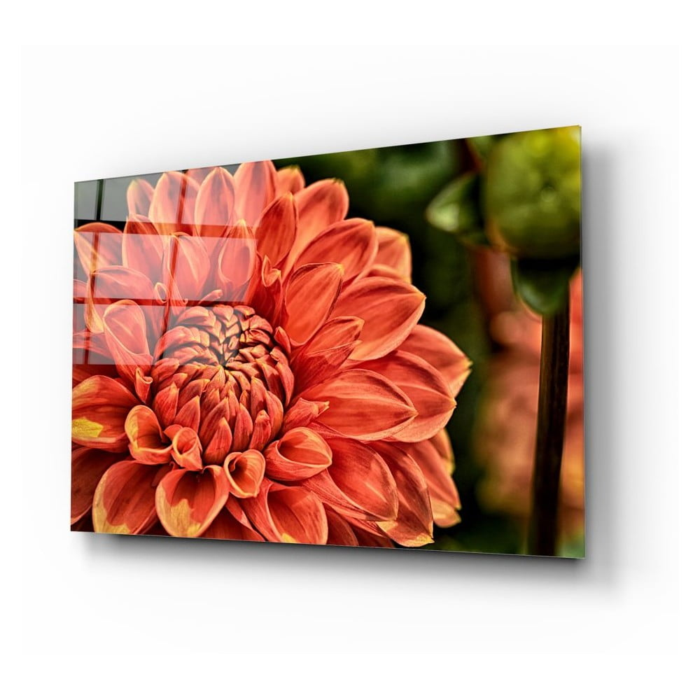 Skleněný obraz Insigne Flowers IV.