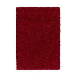 Koberec Guardian Red, 80x150 cm
