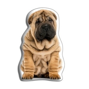 Pernă Adorable Cushions Shar-Pei