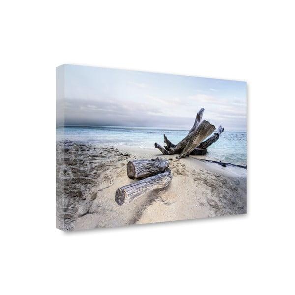 Canvas Sand Branch fali kép, 85 x 113 cm - Styler
