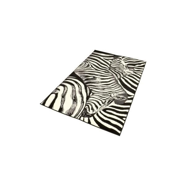 Koberec City & Mix - zebra, 140x200 cm