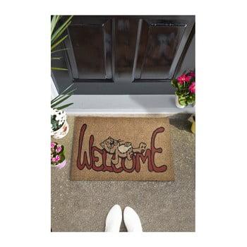 Covoraș intrare Welcome Cat, 70 x 45 cm imagine
