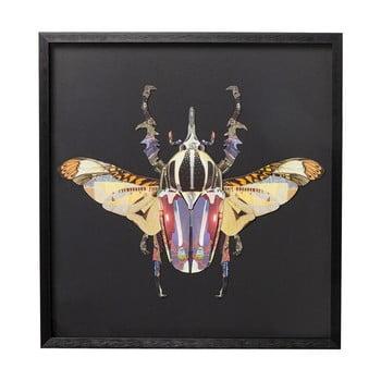 Tablou Kare Design Beetle, 60 x 60 cm