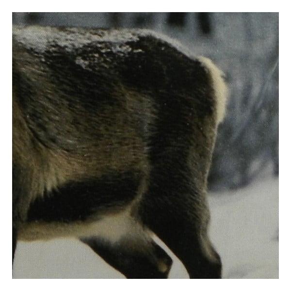 Polštář Sepia Reindeer Nature 60x60 cm