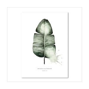Plakát Leo La Douce Banana Leaf, 29,7x42cm