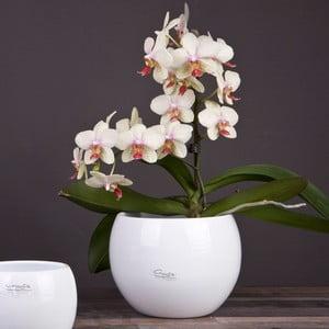 Květináč Arctic bílý, 20 cm