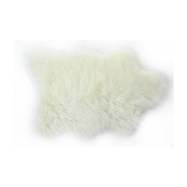 Bílý koberec Apolena, 50x70 cm
