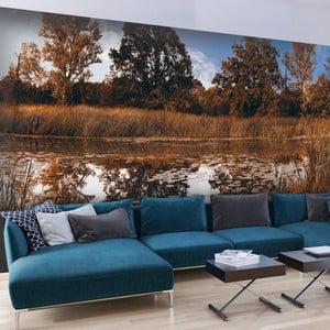 Velkoformátová tapeta Artgeist Autumn Reeds, 300x210cm