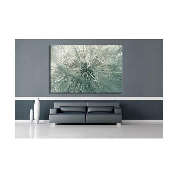Fotoobraz Chmýří pampelišky 90x60 cm