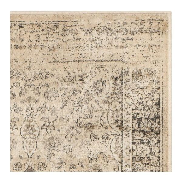 Koberec Safavieh Sasha, 66 x 243 cm