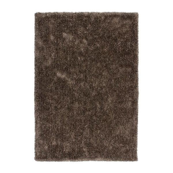 Koberec Flash! 120x170 cm, tmavě hnědý