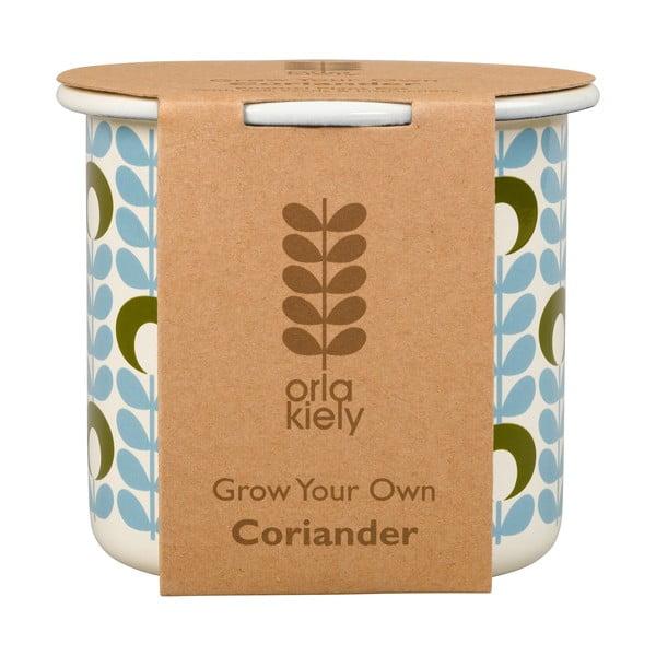 Květináč se semínky koriandru Orla Kiely Grow Your Own