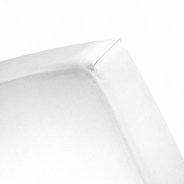 Prostěradlo Cinderella White, 160x200 cm