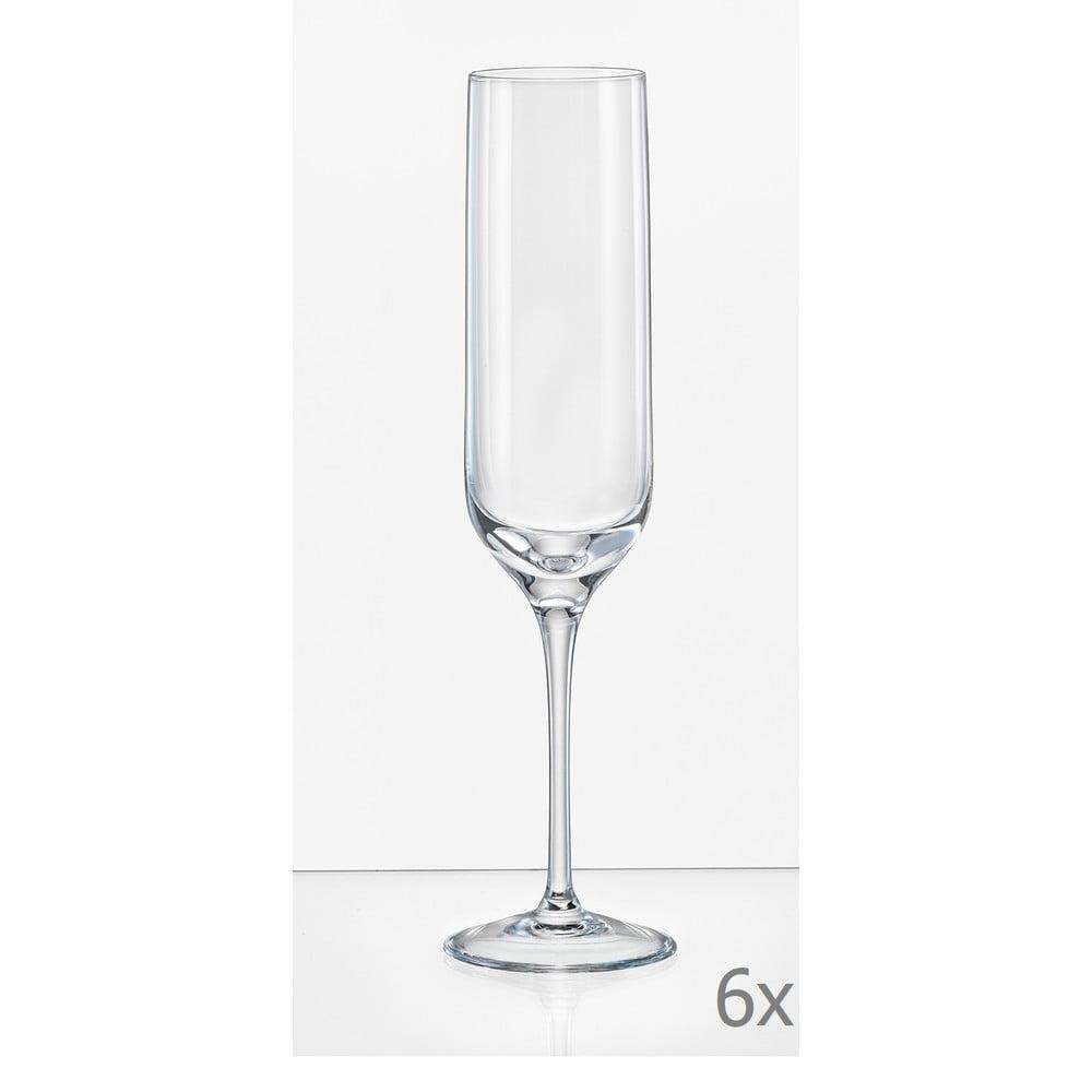 Sada 6 sklenic na šampaňské Crystalex Uma, 200 ml