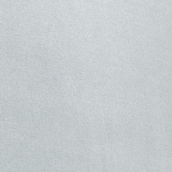 Modrošedá lenoška Vivonita Nellie