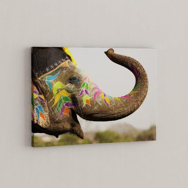 Obraz Šťastný slon, 50x70 cm