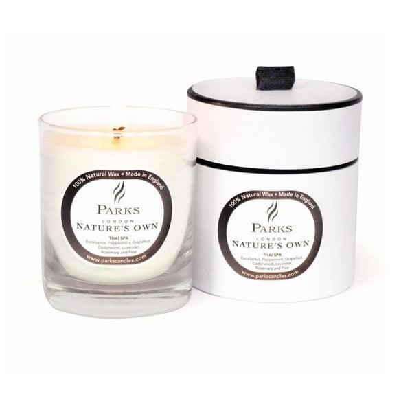 Thai Spa eukaliptusz, borsmenta és grapefruit illatú gyertya, 45 óra égési idővel - Parks Candles London