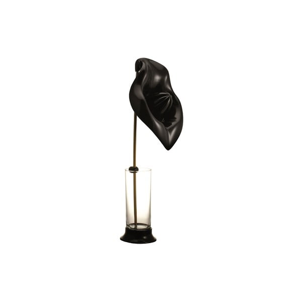 Odšťavňovač se sklenicí Anthurium Black