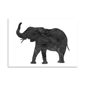 Poster Americanflat  Elephant, 30 x 42 cm