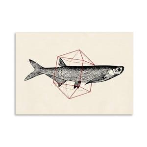 Plakát Fish In Geometrics 2 od Florenta Bodart, 30x42 cm