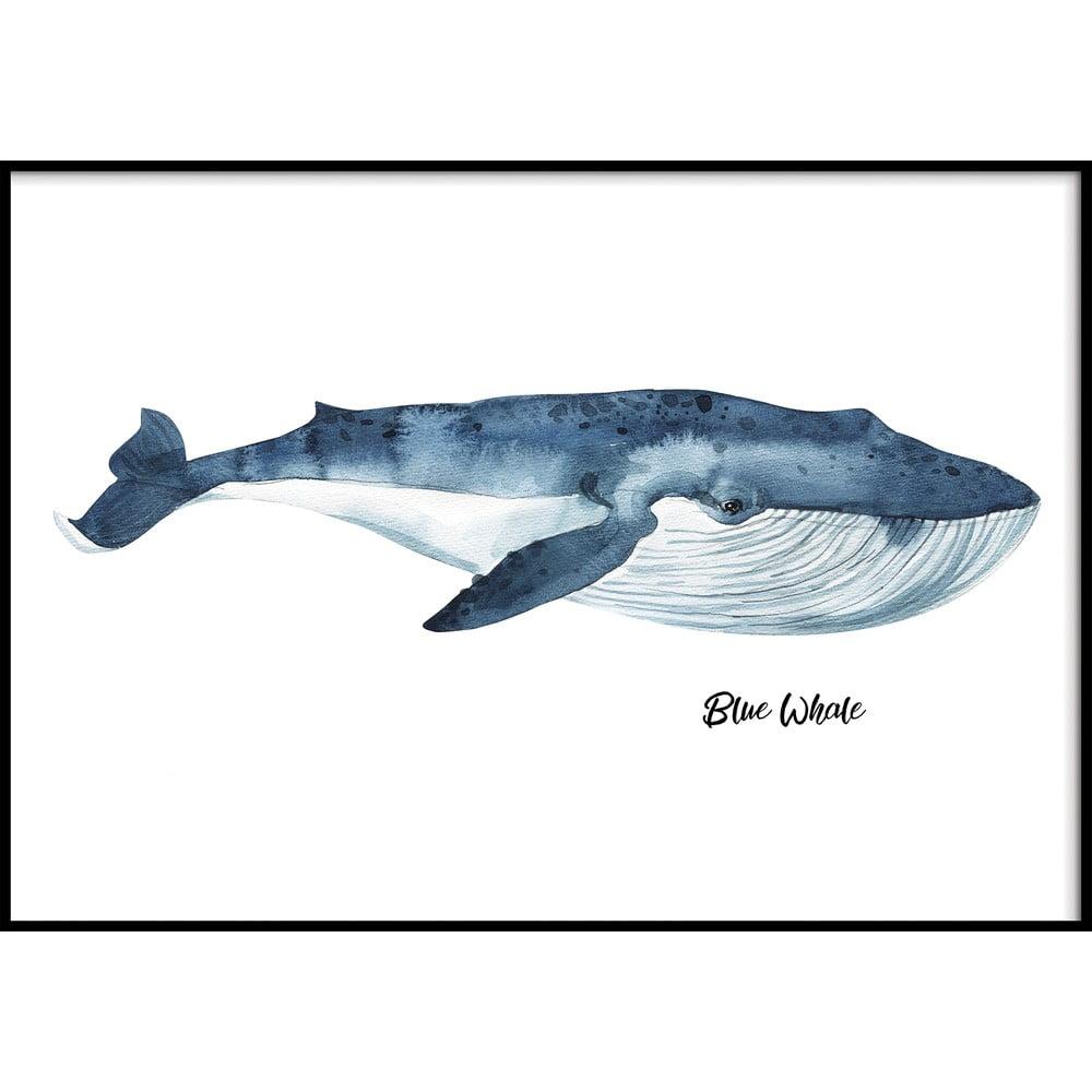 Nástěnný obraz BLUE/WHALE, 40x50cm