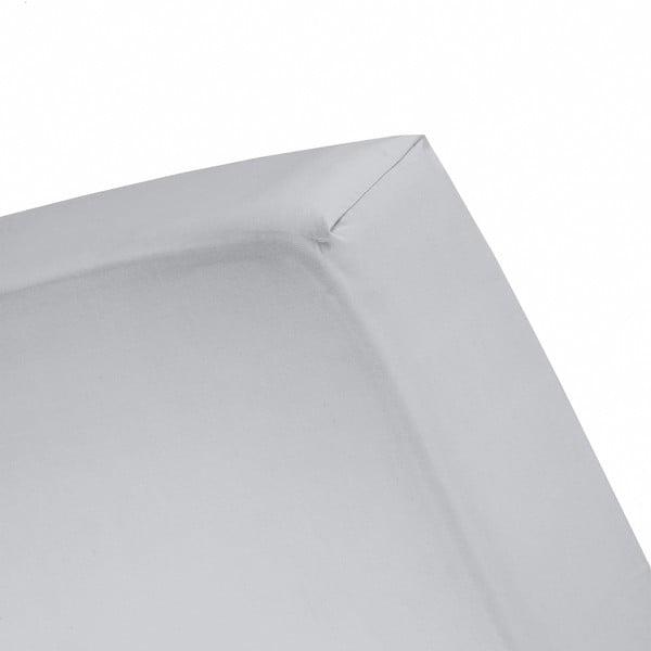 Prostěradlo Cinderella Grey, 80x200 cm