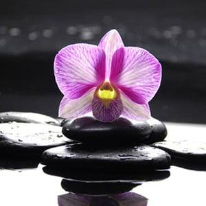 Obraz na skle Orchidej Zen I, 50x50 cm