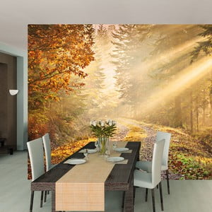 Velkoformátová tapeta Deep Forest, 315x232 cm