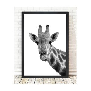 Obraz Tablo Center Giraffe Portrait, 24x29cm