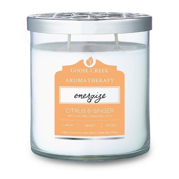 Świeczka zapachowa w szklanym pojemniku Goose Creek Citrus & Ginger, 60 godz. palenia