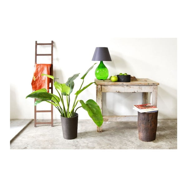 Palmový květináč Black Pot