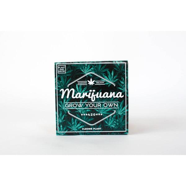 Pěstitelský set se semínky marihuany Gift Republic