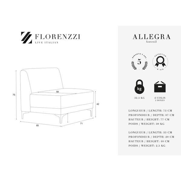 Krémově bílé křeslo Florenzzi Allegra