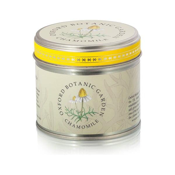 Lumânare parfumată cu aromă de mușețel Bahoma London Fragranced, 35 ore de ardere