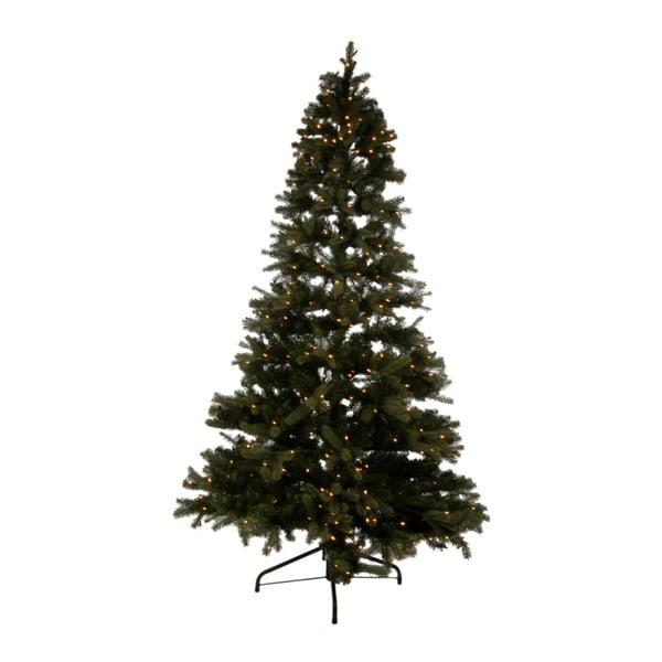 Vánoční stromek se světýlky Noël
