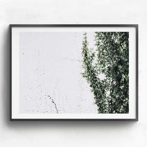 Obraz v dřevěném rámu HF Living Tabaiba, 30 x 40 cm