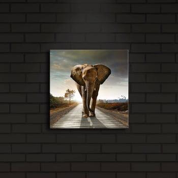 Tablou cu LED-uri Elephant, 28 x 28 cm de la Unknown