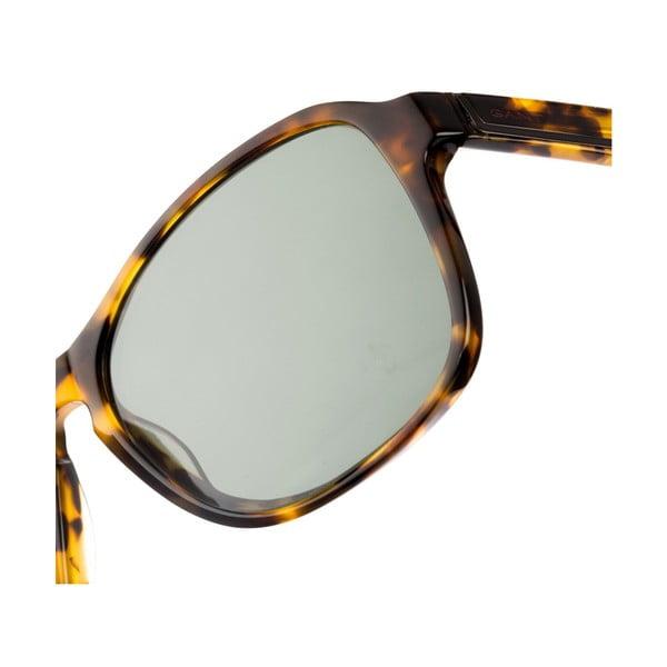 Pánské sluneční brýle GANT Hollis Brown