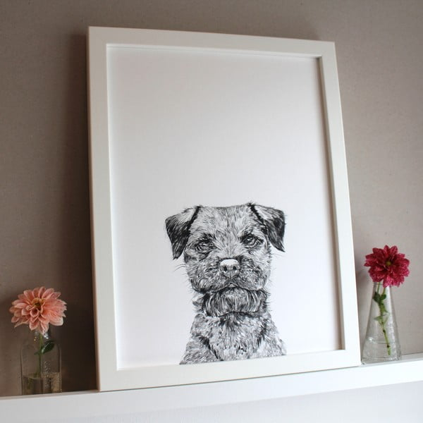 Plakát Baxter The Border Terrier, 30x40 cm