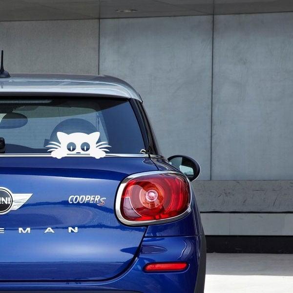 Samolepka Fanastick Hidden Cat