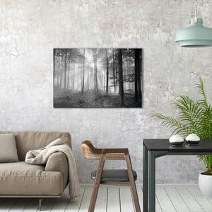 Skleněný obraz OrangeWallz Black Forest, 60 x 90 cm